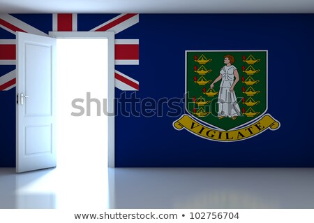 house with flag of virgin islands british stock photo © mikhailmishchenko