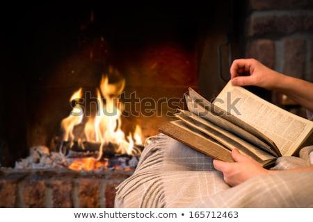 kandalló · piros · téglák · szoba · belső · forró - stock fotó © robuart