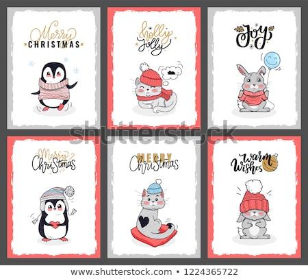 クリスマス · サンタクロース · 帽子 · 猫 · ペット - ストックフォト © robuart