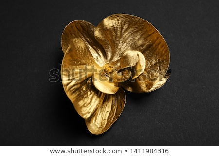 Black jewelry orchid with gold paint Stock photo © blackmoon979