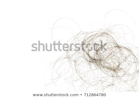 Macro Shot Of Hair Loss  Stock photo © AndreyPopov