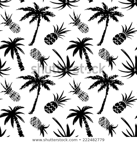 Pineapple Palm Tropical Tree Monochrome Vector Stock photo © pikepicture