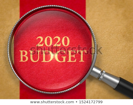 2020 Budget through Loupe on Book Title Page. Stock photo © tashatuvango