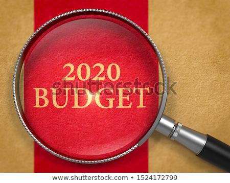 2020 Budget Through Loupe On Book Title Page Foto stock © Tashatuvango