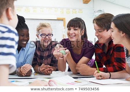 Nauczyciel model mózgu biologii klasy dziewczyna Zdjęcia stock © HighwayStarz
