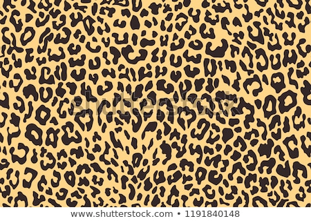Leopard pattern design in black and white colors Stock photo © Zsuskaa
