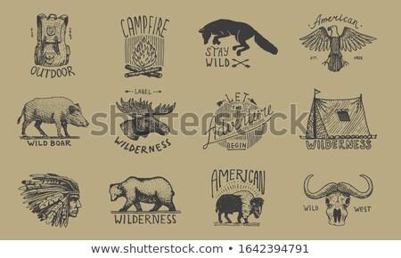 旅行 バッジ セット ヴィンテージ 手描き キャンプ ストックフォト © JeksonGraphics
