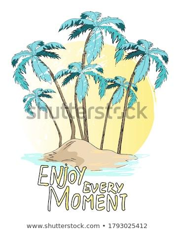 Cartaz palms ilha elegante desfrutar momento Foto stock © robuart
