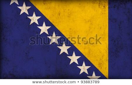 Bosnia Herzegovina grunge bandera edad vintage textura grunge Foto stock © HypnoCreative