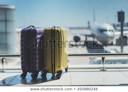 Uçak seyahat bavul dünya beyaz arka plan Stok fotoğraf © m_pavlov