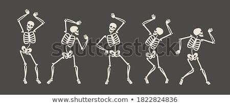 Csontváz kép emberi test gyógyszer csoport Stock fotó © TsuneoMP