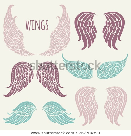 ornate graphic vector template with wings stock photo © chromaco