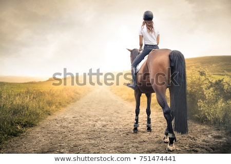 carreras · de · caballos · estable · amanecer · listo · caballo · carrera - foto stock © photography33