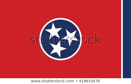 Tennessee pavillon illustration USA bannière Photo stock © tony4urban