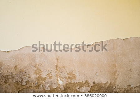 peeling wall torn wallpaper stock photo © sirylok