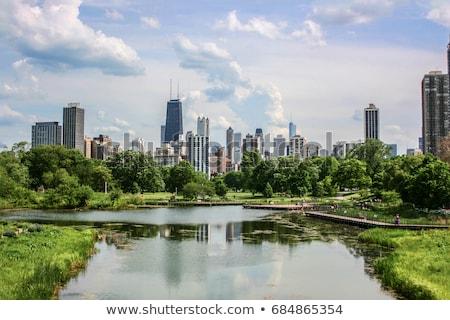Distant Chicago view Stock photo © benkrut