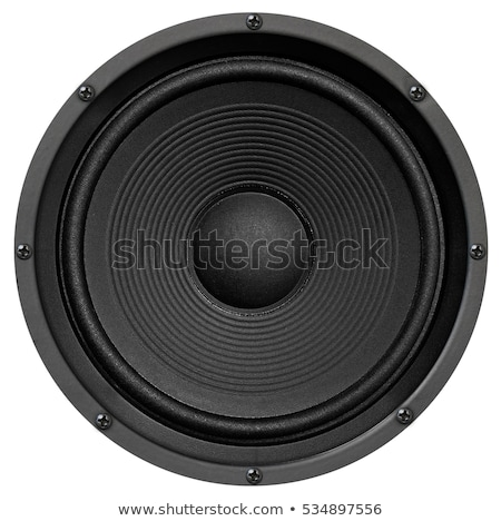 Stereo music audio equipment bass sound speaker Stock photo © ozaiachin