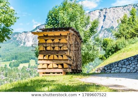 スタック · 薪 · 木材 · 興味深い · 火災 - ストックフォト © manfredxy