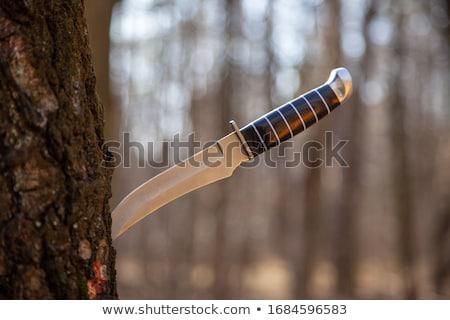 Stock fotó: öreg · vadászat · kés · rozsdás · fából · készült · izolált