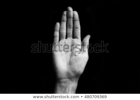 kobieta · stop · biały · tle · dłoni · zawodowych - zdjęcia stock © wavebreak_media