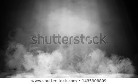 humo · blanco · negro · hombre · traje · sombrero - foto stock © velkol
