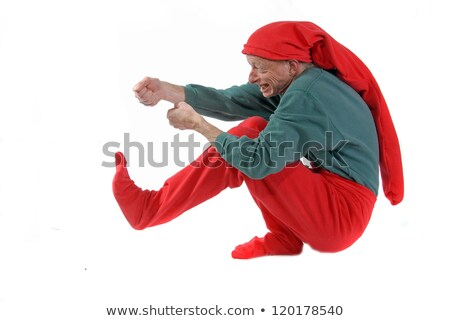 Santa's Elf on Edge or Border Stock photo © AlienCat