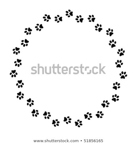 Paw Print Circle Stock photo © cteconsulting