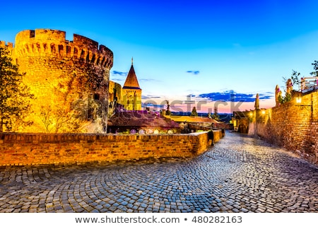 Белград старые замок Сербия трава часы Сток-фото © badmanproduction
