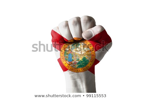 Fist Painted In Colors Of Us State Of Florida Flag Foto stock © vepar5