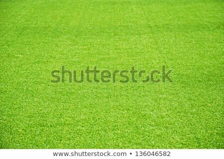 vibráló · zöld · golfpálya · kép · felhők · golf - stock fotó © scenery1