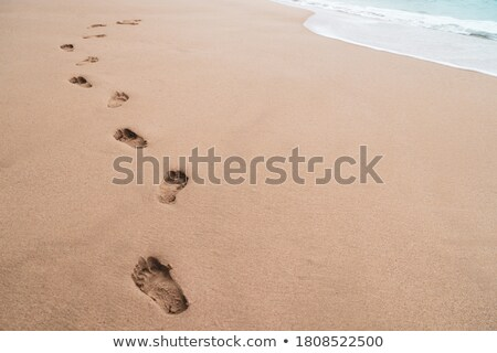 Footsteps on a beach sand    Stock photo © Taigi