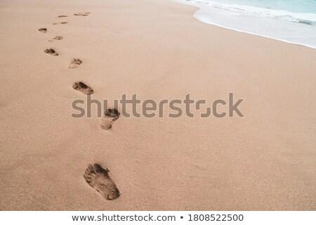 footsteps on a beach sand stock photo © taigi