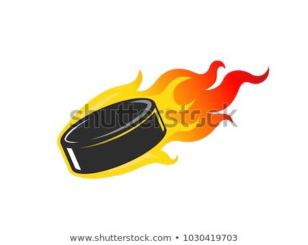 jégkorong · tűz · izolált · fekete · vektor · tél - stock fotó © krisdog