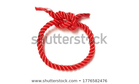 red necklace in apple shape isolated on white background Stock photo © natika