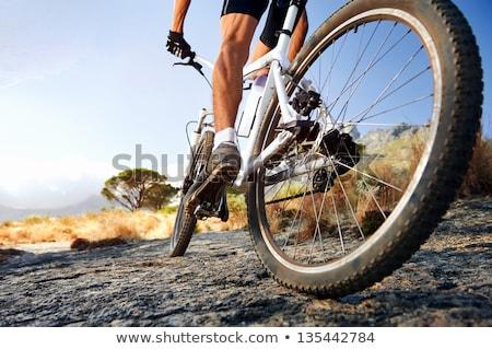 Jonge man paardrijden mountainbike onverharde weg landschap berg Stockfoto © nito