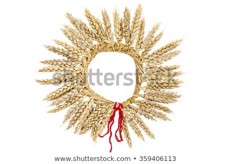 Noël paille couronne décoration photo présente Photo stock © Dermot68