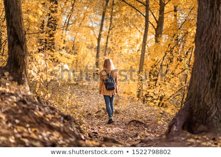 Woman out for an autumn stroll in the woods Stock photo © photography33
