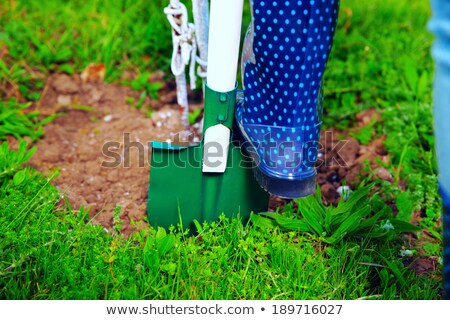 Woman wearing blue rubber boots using shovel in her garden Stock photo © deandrobot