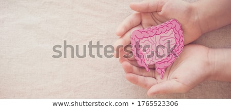 intestine cancer Stock photo © adrenalina