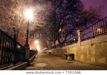 Wall cobble in the city at night Stock photo © carloscastilla