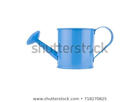 Green watering can with red flowers isolated on white Stock photo © tetkoren