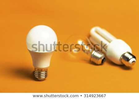 Different old types of bulbs and modern light-bulb Stock photo © ozaiachin