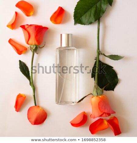 vrouw · parfum · mooie · fles · geïsoleerd · witte - stockfoto © tetkoren