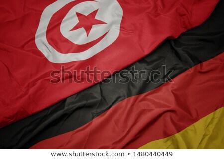 Германия Тунис флагами головоломки изолированный белый Сток-фото © Istanbul2009