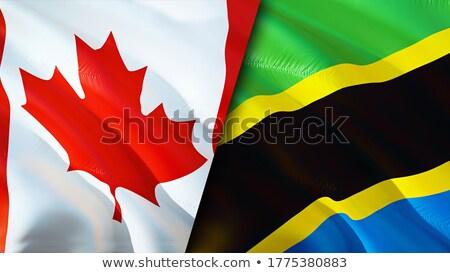 Canada Tanzania vlaggen puzzel geïsoleerd witte Stockfoto © Istanbul2009