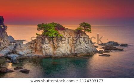 Lloret de Mar beach sunrise in costa Brava Stock photo © lunamarina