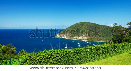 beach of grande anse deshaies guadeloupe stock photo © capturelight