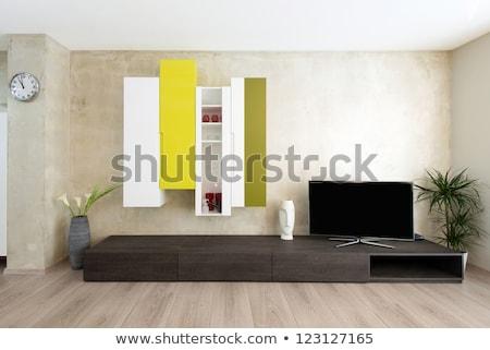 salon · szczegół · 3d · nowoczesne · ściany · moda - zdjęcia stock © meinzahn