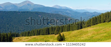 Stock photo: Blue mountains in Ukraine Carpathians
