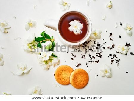 Tea break on nature Stock photo © -Baks-